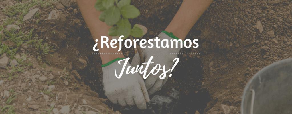 reforestamos-juntos1-1