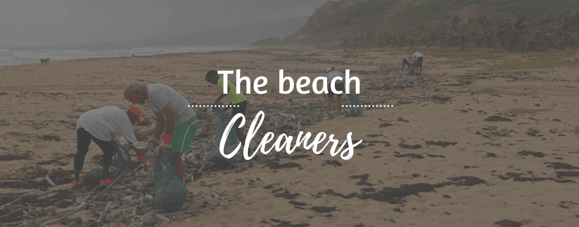 team-building-the-beach-cleaners-1